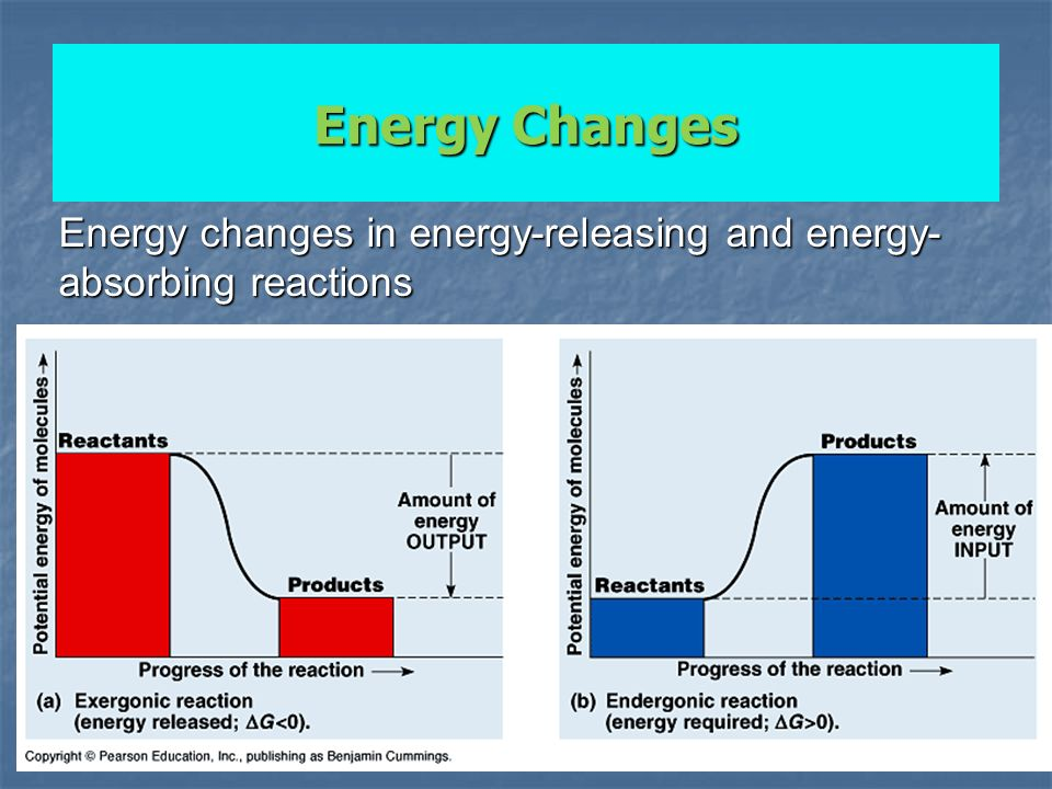 Energy changes in energy-releasing and energy-absorbing reactions