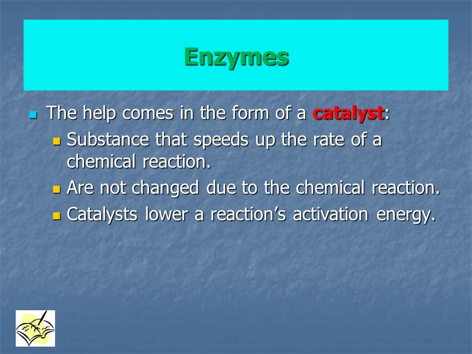 Enzymes The help comes in the form of a catalyst: