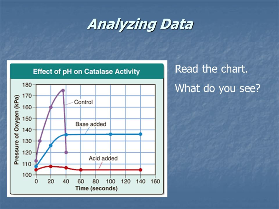 Analyzing Data Read the chart. What do you see