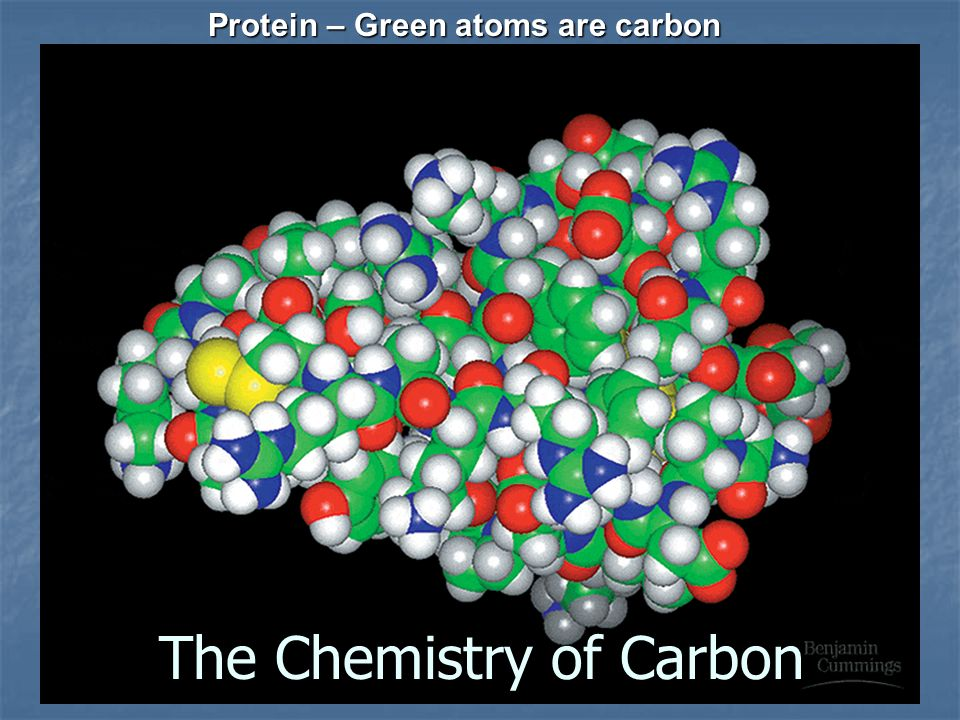 Protein – Green atoms are carbon