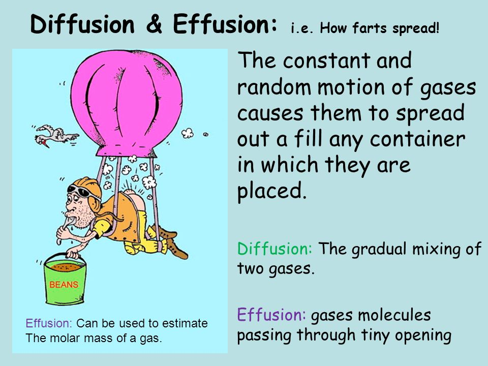 Diffusion & Effusion: i.e. How farts spread!