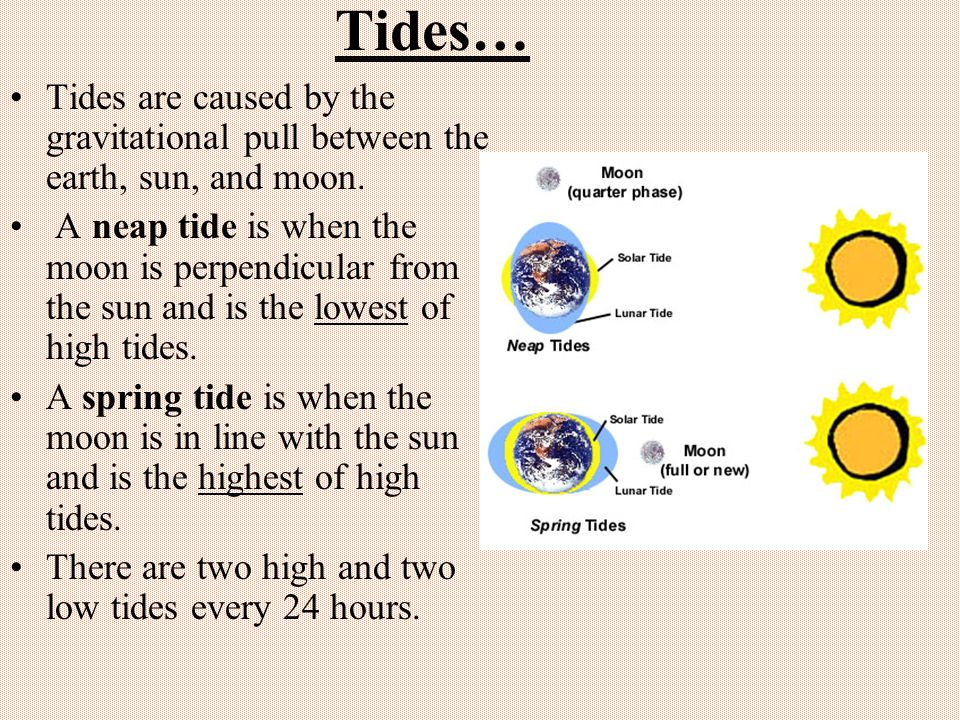 Tides… Tides are caused by the gravitational pull between the earth, sun, and moon.