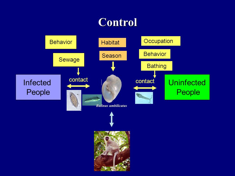 Control Infected People Uninfected People Occupation Behavior Habitat