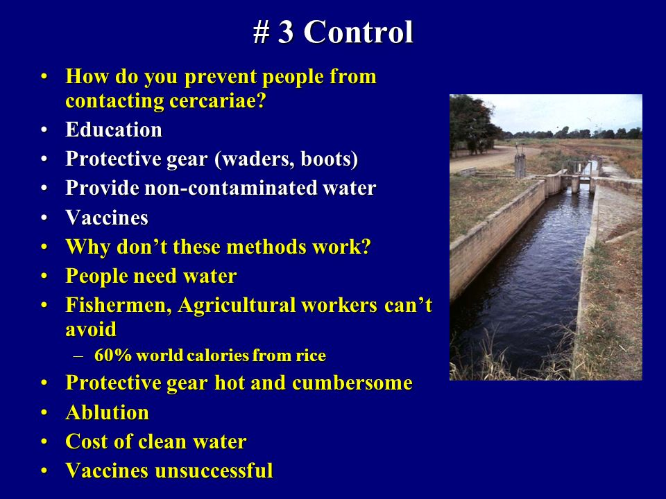 # 3 Control How do you prevent people from contacting cercariae