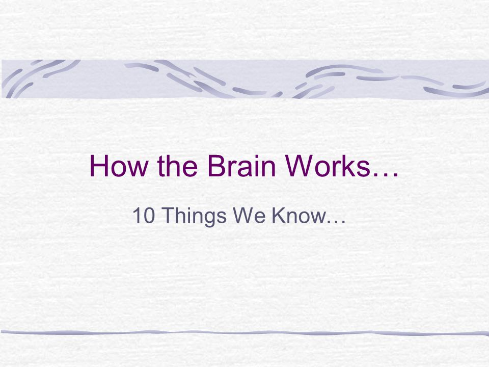 How the Brain Works… 10 Things We Know…