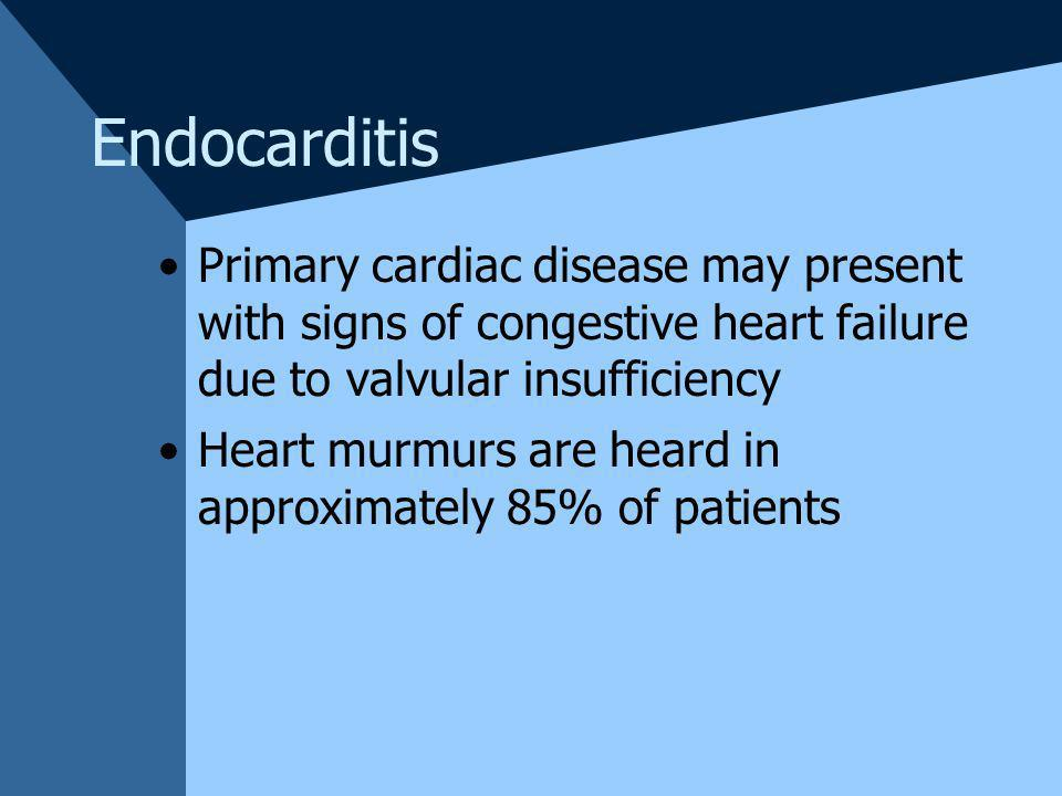 Endocarditis Primary cardiac disease may present with signs of congestive heart failure due to valvular insufficiency.