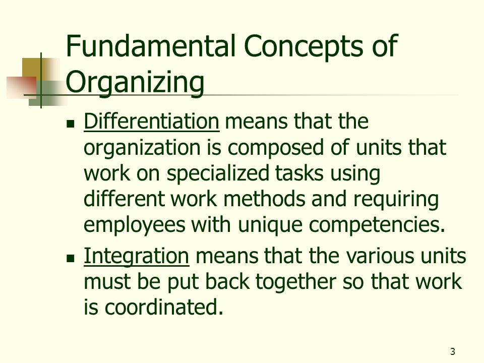 Fundamental Concepts of Organizing