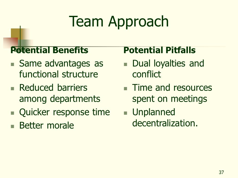 Team Approach Same advantages as functional structure
