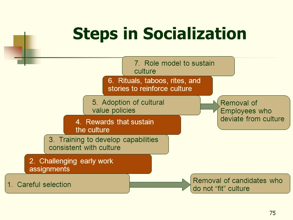 Steps in Socialization