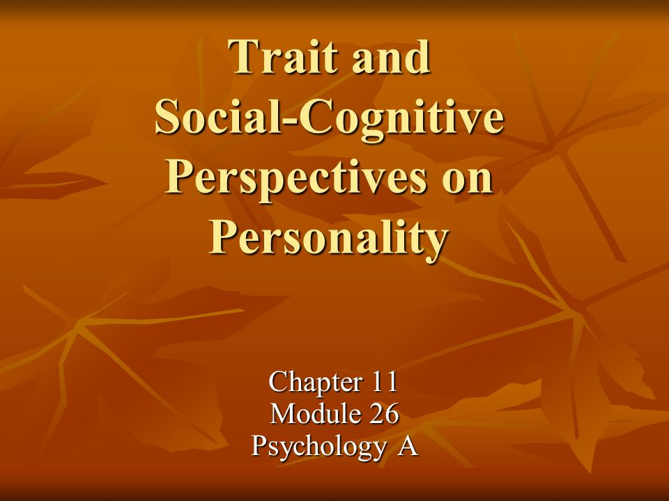 Trait and Social-Cognitive Perspectives on Personality