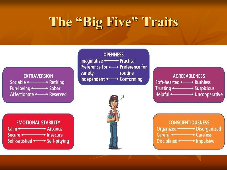 The Big Five Traits