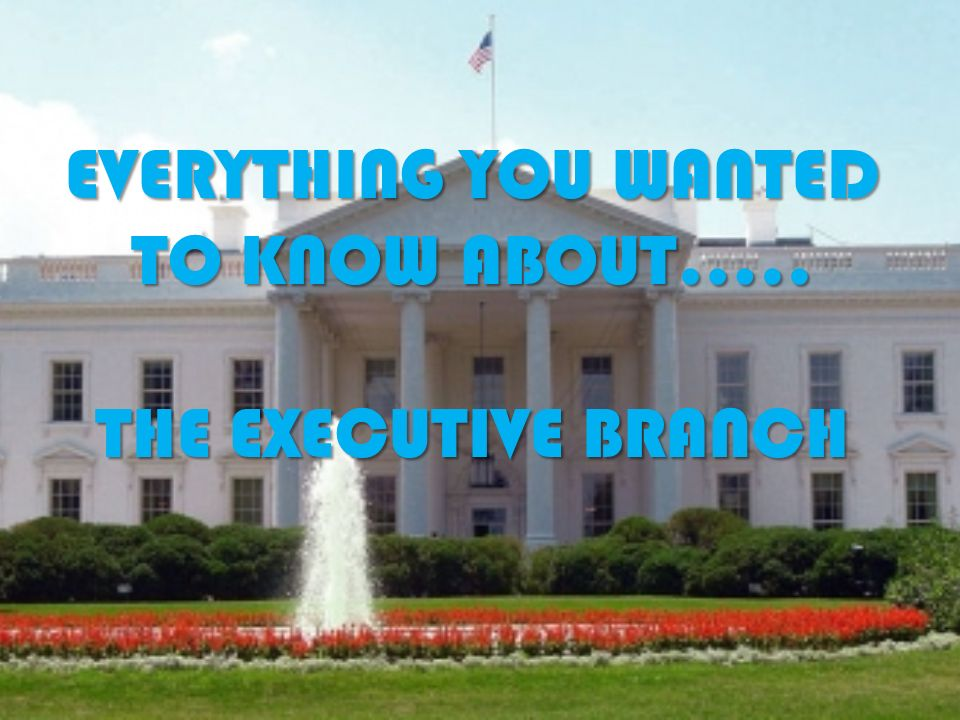 EVERYTHING YOU WANTED TO KNOW ABOUT….. THE EXECUTIVE BRANCH
