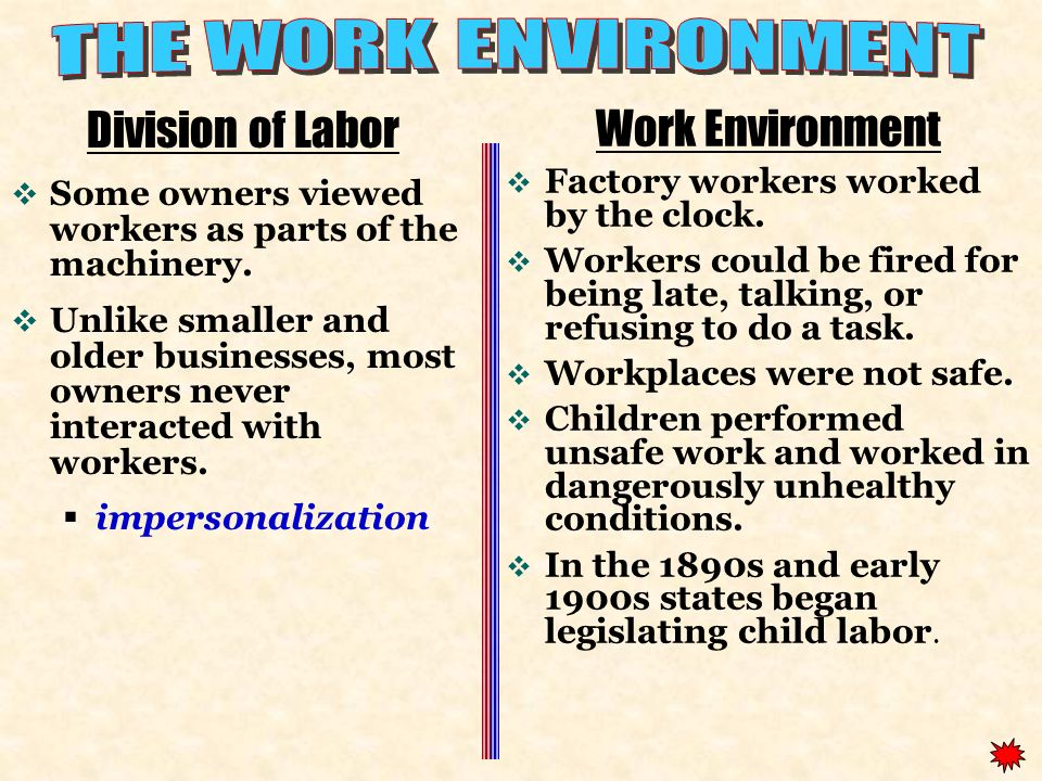THE WORK ENVIRONMENT Division of Labor Work Environment
