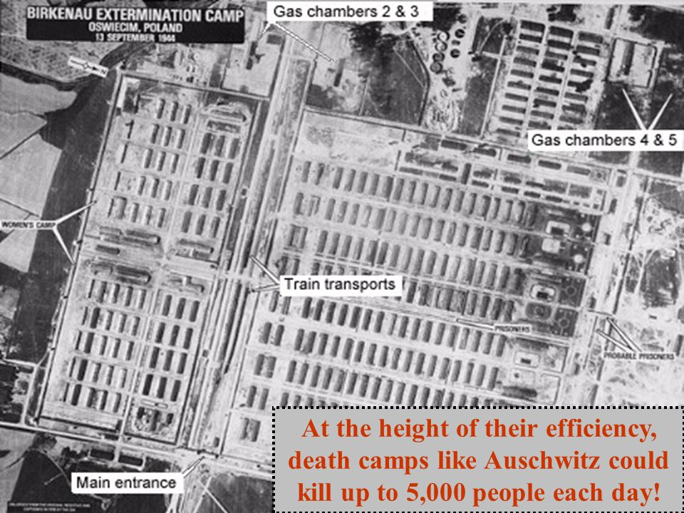 At the height of their efficiency, death camps like Auschwitz could kill up to 5,000 people each day!
