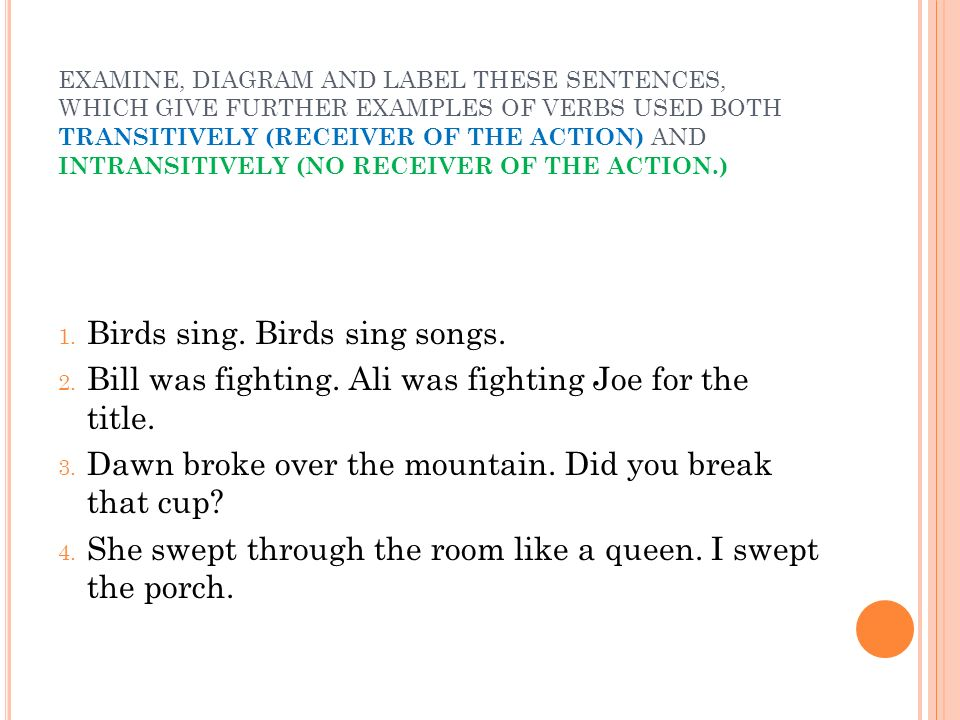 Birds sing. Birds sing songs.