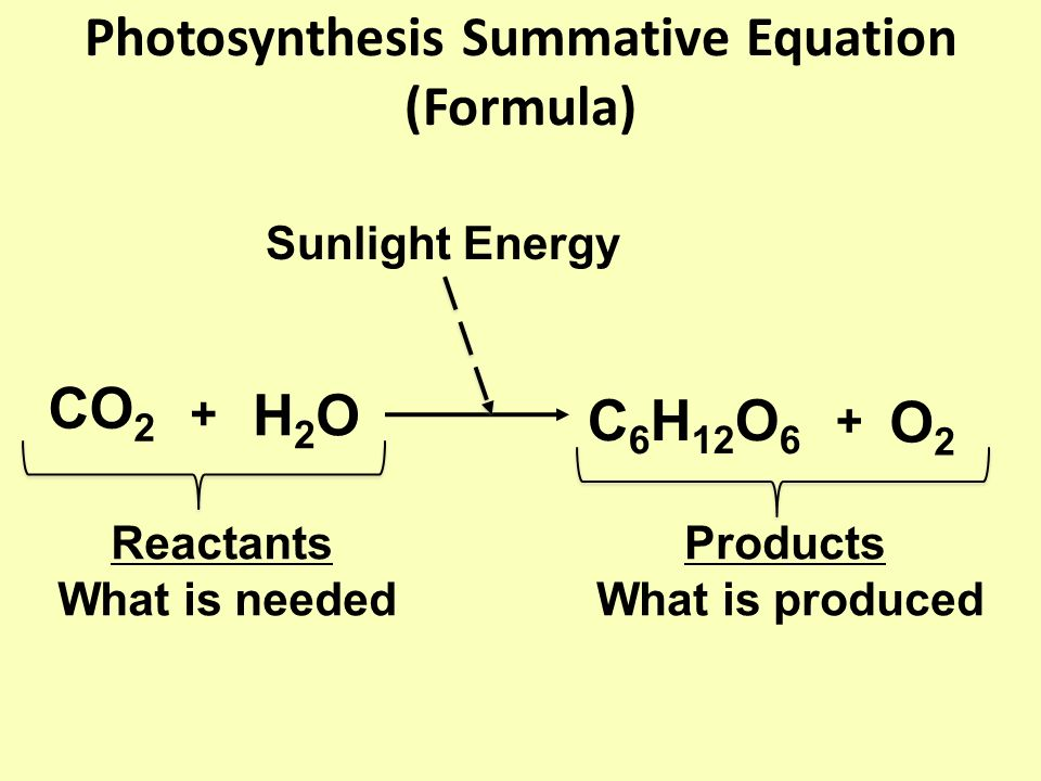 Photosynthesis Summative Equation (Formula)