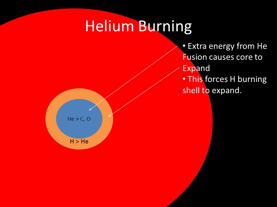Helium Burning Extra energy from He Fusion causes core to Expand