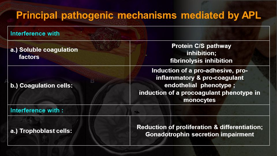 Principal pathogenic mechanisms mediated by APL