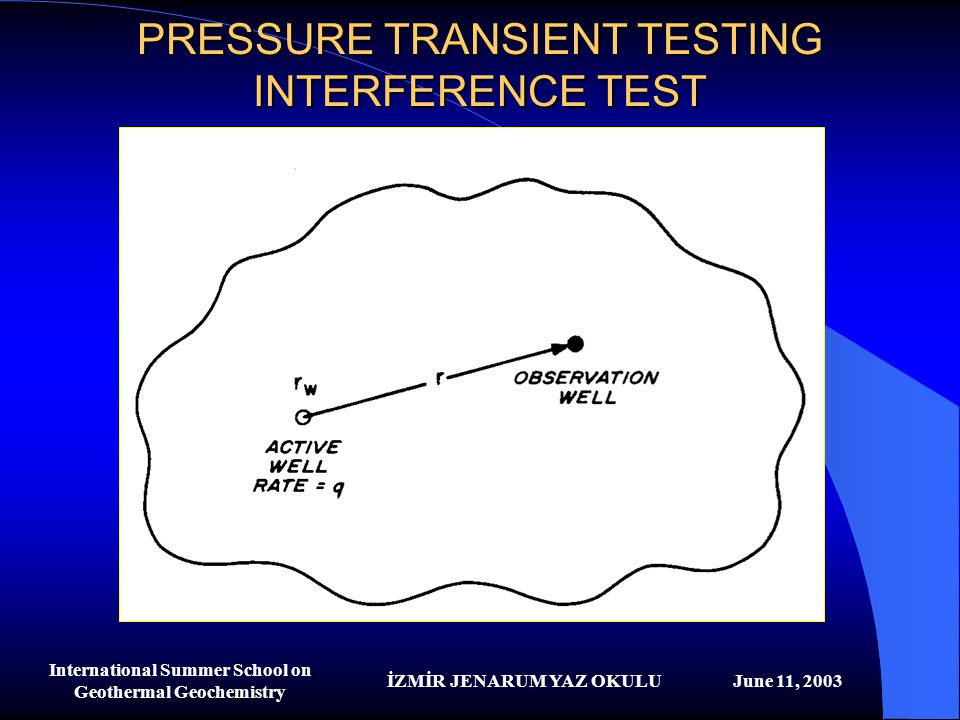PRESSURE TRANSIENT TESTING INTERFERENCE TEST