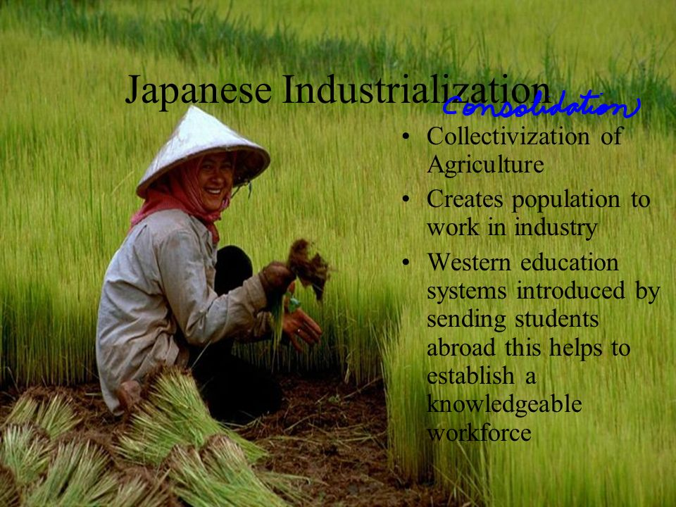 Japanese Industrialization