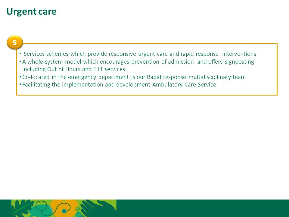 Urgent care 5. Services schemes which provide responsive urgent care and rapid response interventions.