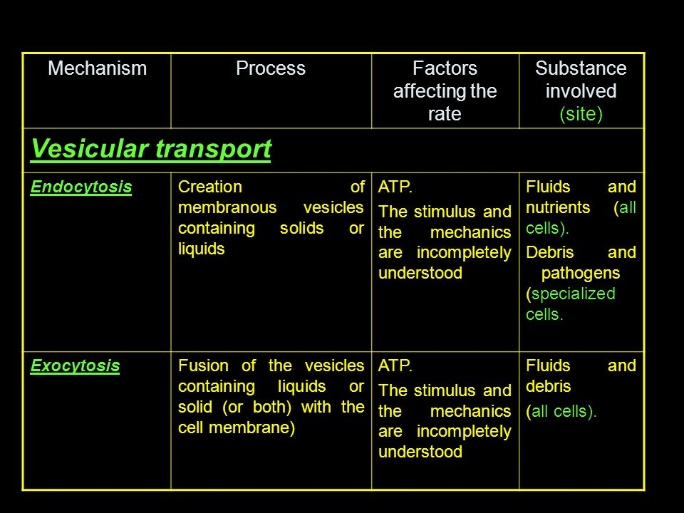 Vesicular transport Mechanism Process Factors affecting the rate