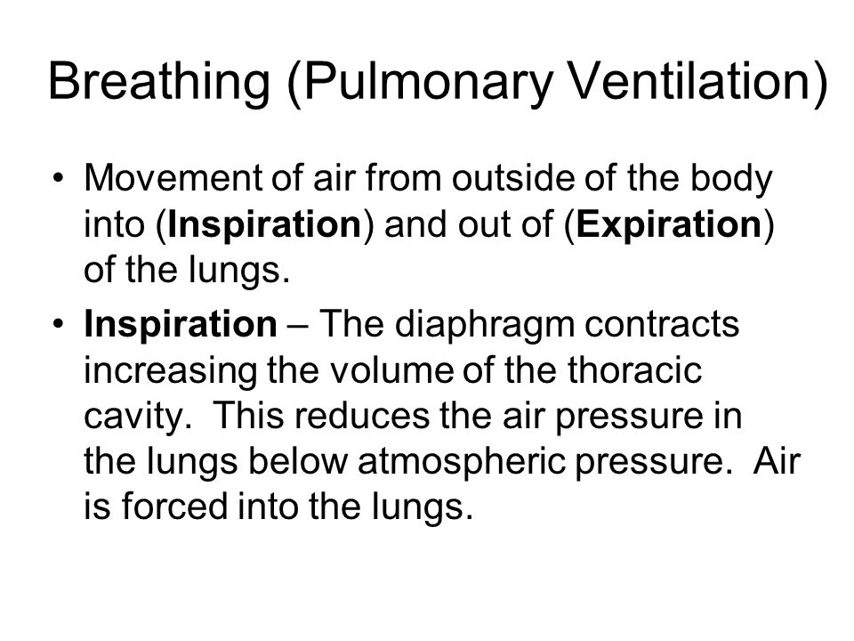 Breathing (Pulmonary Ventilation)