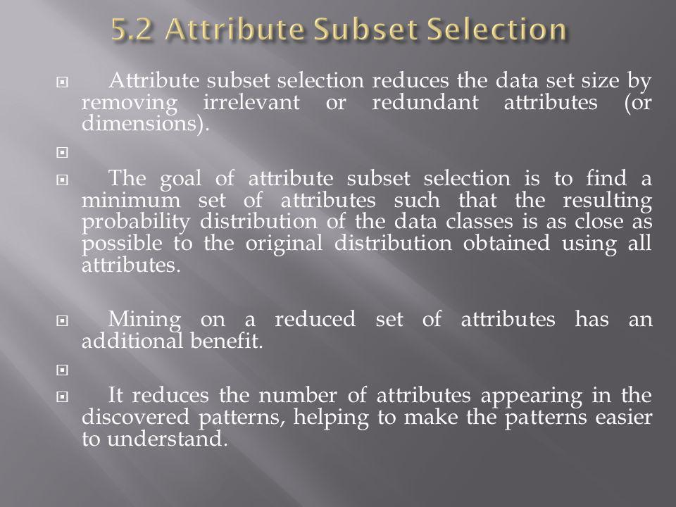 5.2 Attribute Subset Selection