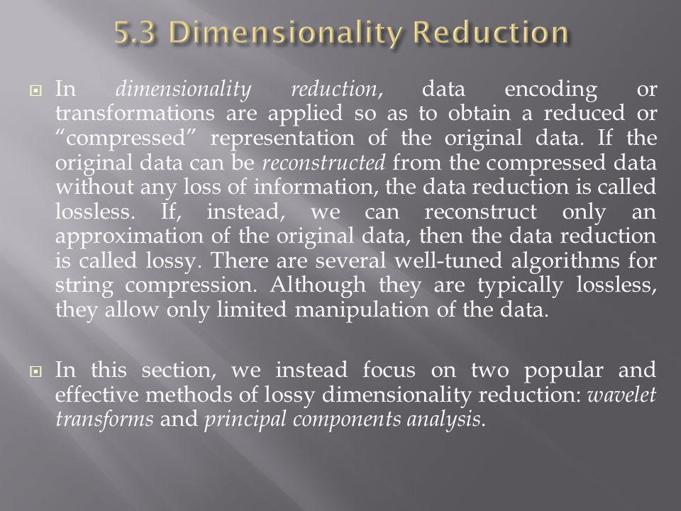 5.3 Dimensionality Reduction