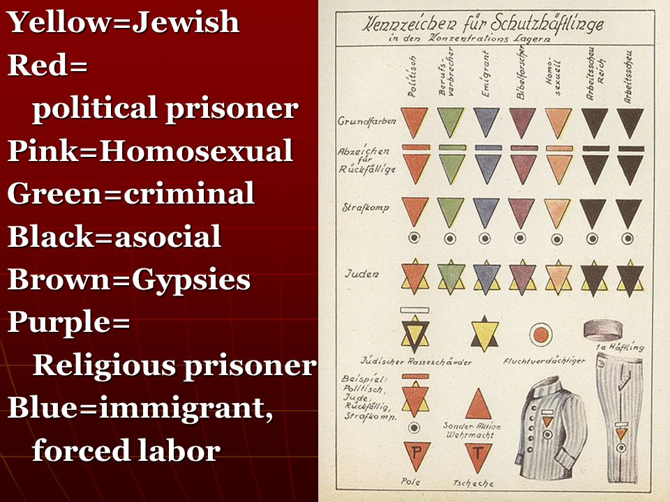 Yellow=Jewish Red= political prisoner. Pink=Homosexual. Green=criminal. Black=asocial. Brown=Gypsies.