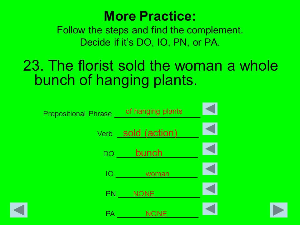 23. The florist sold the woman a whole bunch of hanging plants.