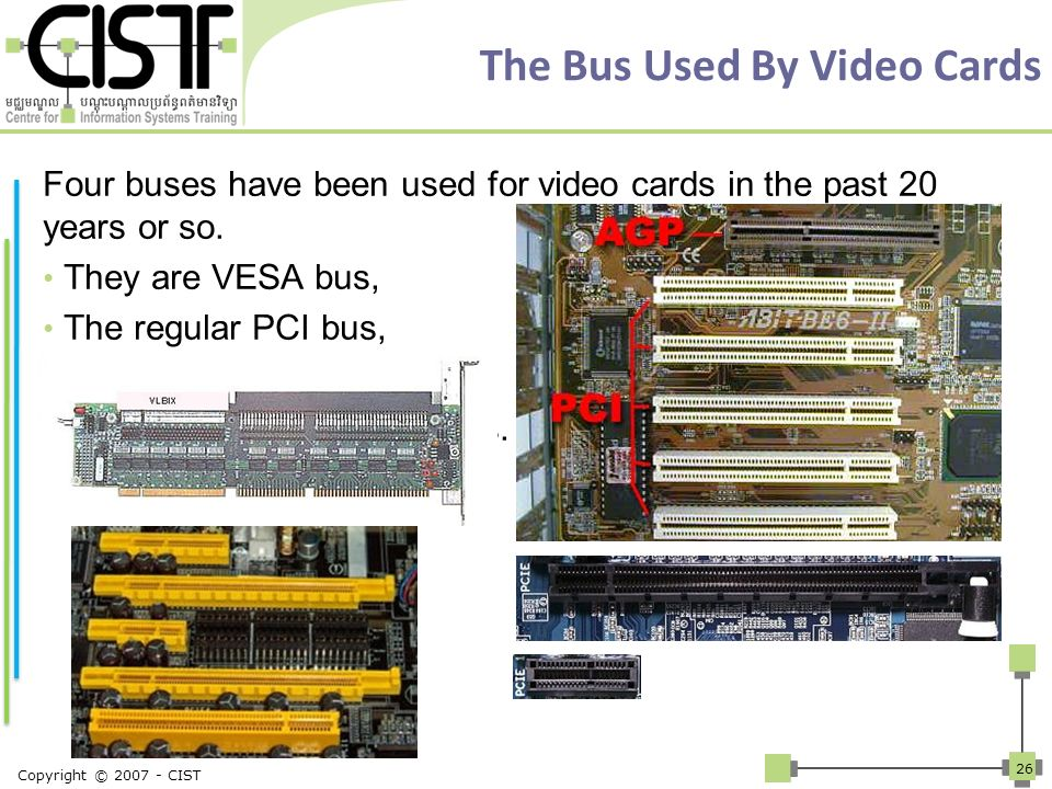 The Bus Used By Video Cards