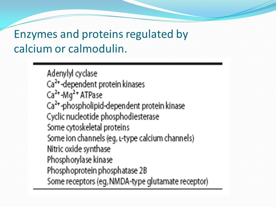 Enzymes and proteins regulated by calcium or calmodulin.