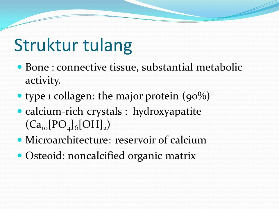 Struktur tulang Bone : connective tissue, substantial metabolic activity. type 1 collagen: the major protein (90%)