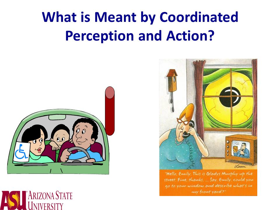 What is Meant by Coordinated Perception and Action
