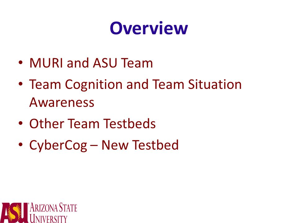 Overview MURI and ASU Team Team Cognition and Team Situation Awareness