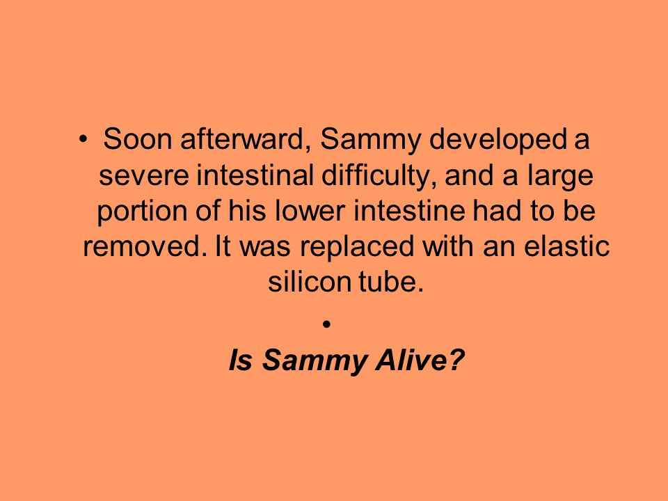 Soon afterward, Sammy developed a severe intestinal difficulty, and a large portion of his lower intestine had to be removed. It was replaced with an elastic silicon tube.