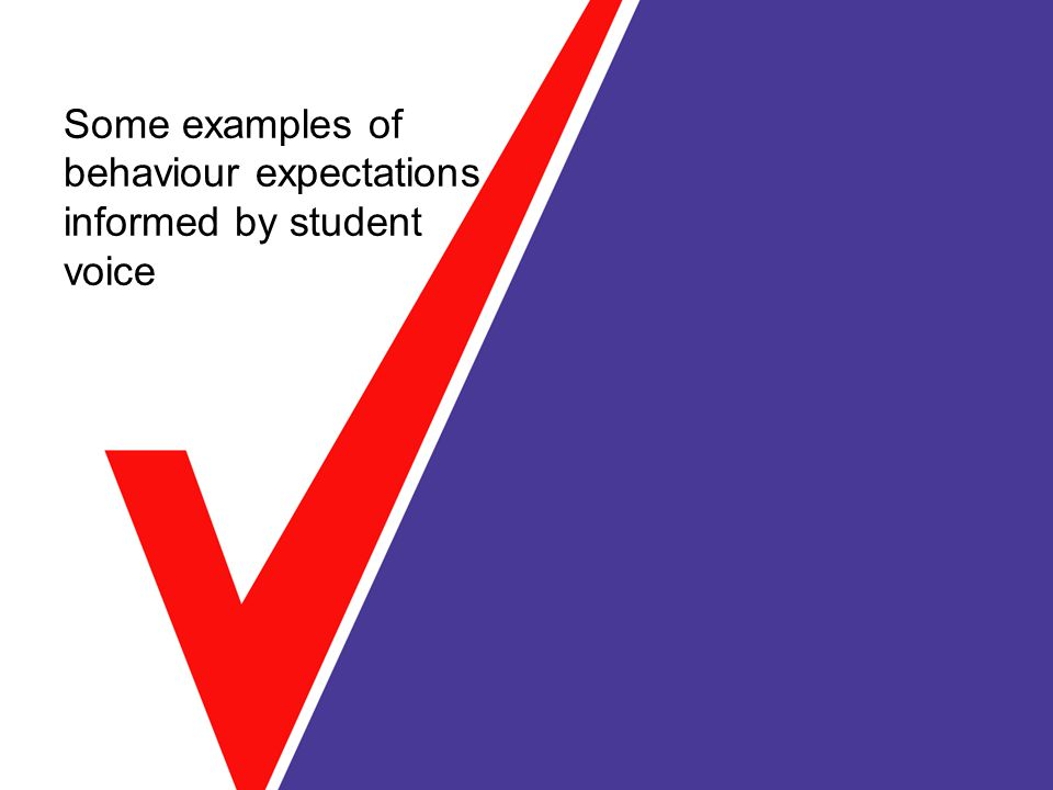 Some examples of behaviour expectations informed by student voice