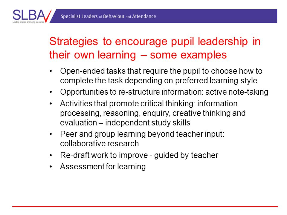 Strategies to encourage pupil leadership in their own learning – some examples