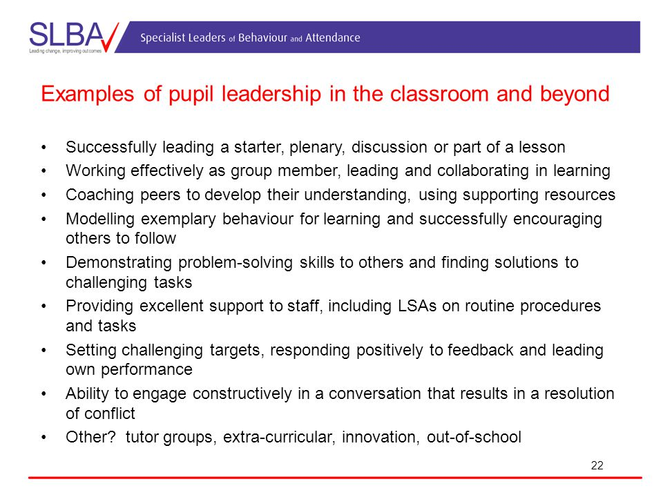 Examples of pupil leadership in the classroom and beyond