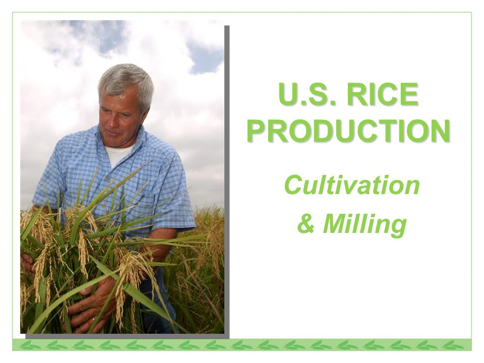 U.S. RICE PRODUCTION Cultivation & Milling