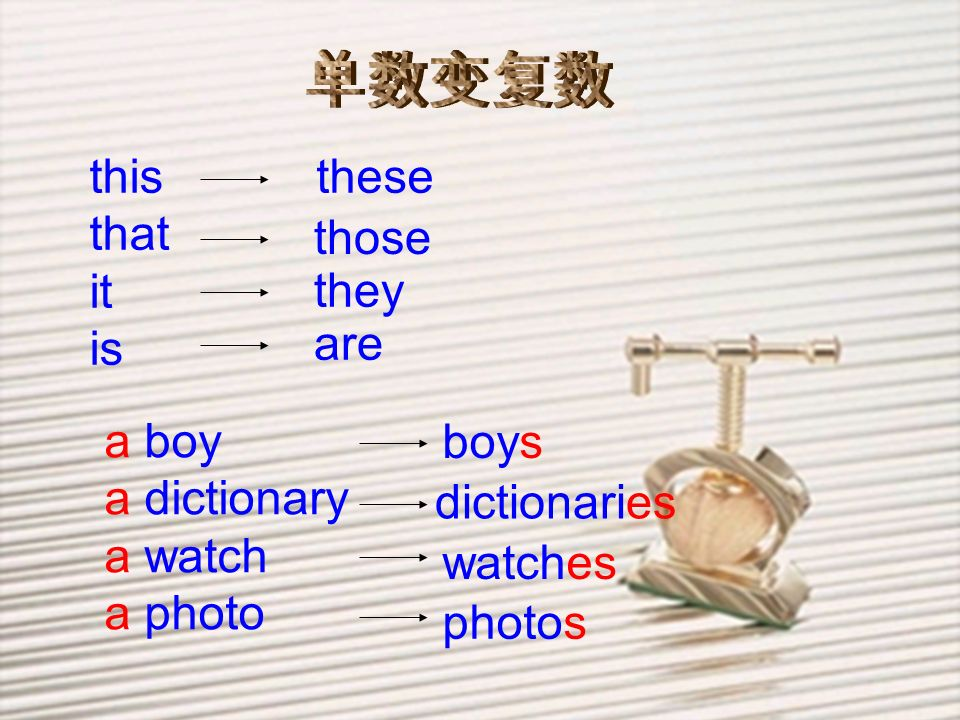 单数变复数 this. that. it. is. these. those. they. are. a boy. a dictionary. a watch. a photo.