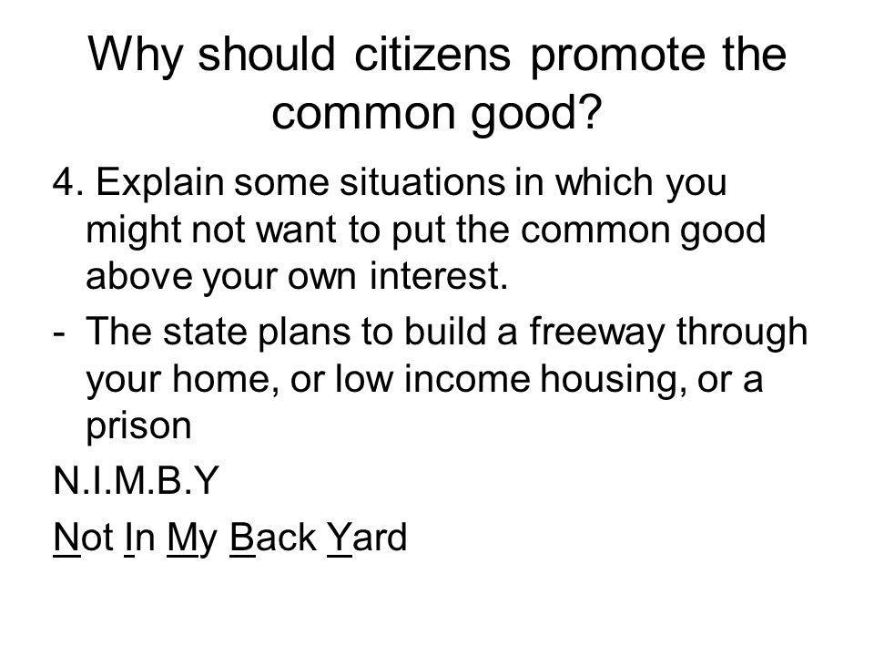 Why should citizens promote the common good