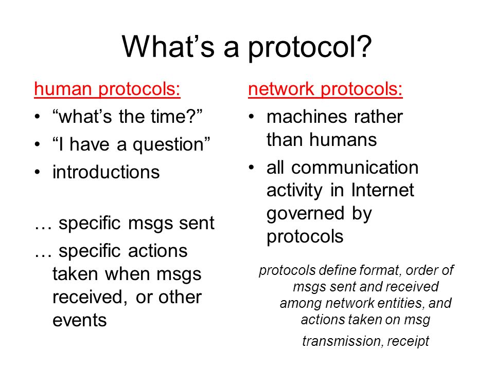 What's a protocol human protocols: what's the time