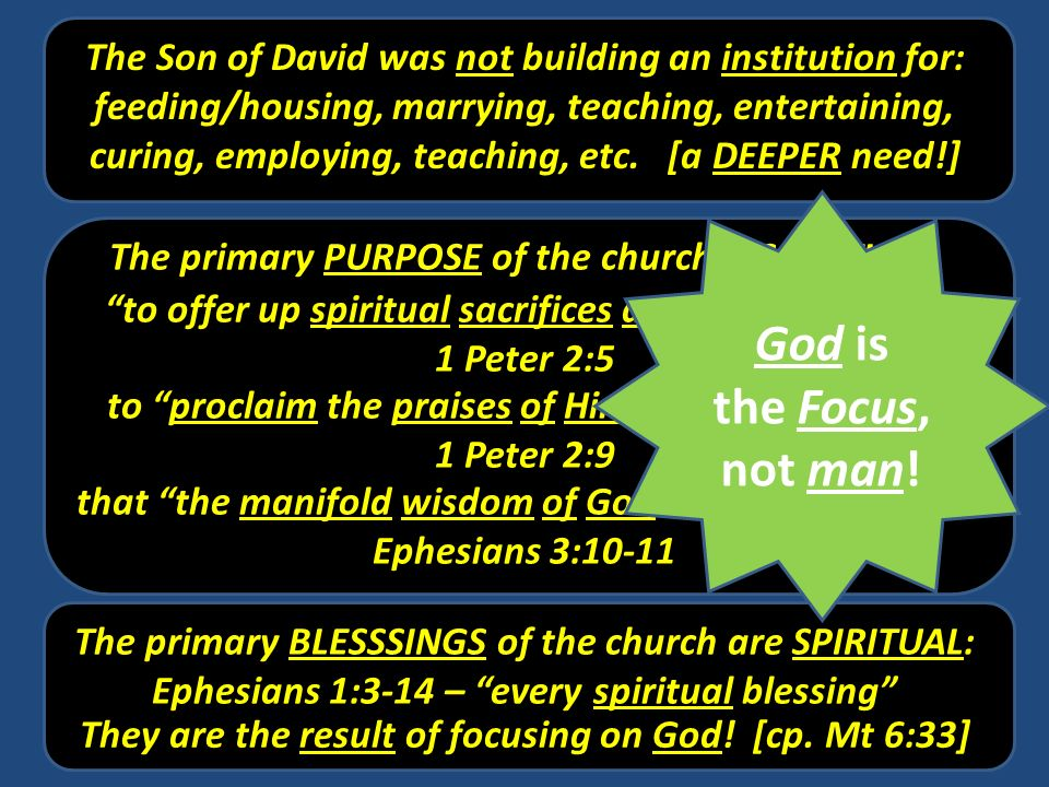 The Son of David was not building an institution for: