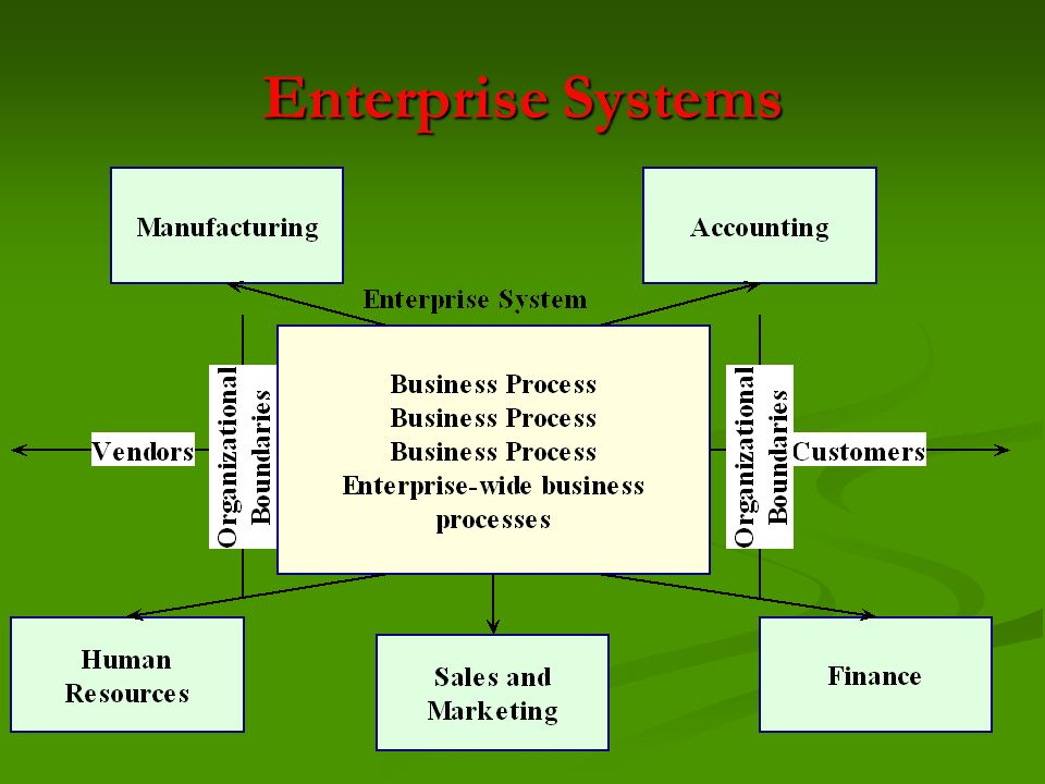 Enterprise Systems
