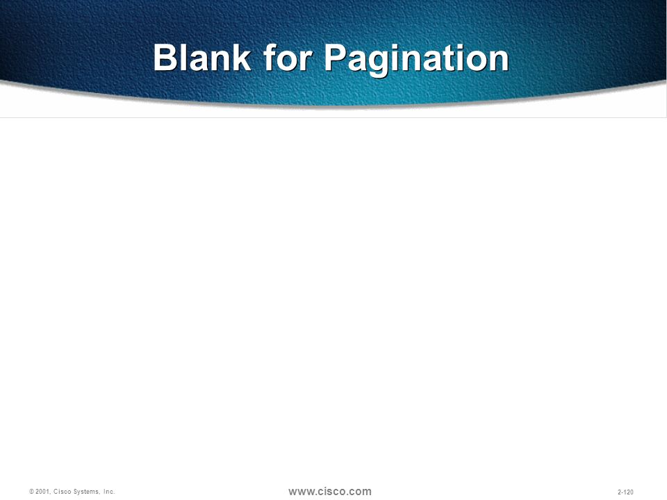 Blank for Pagination