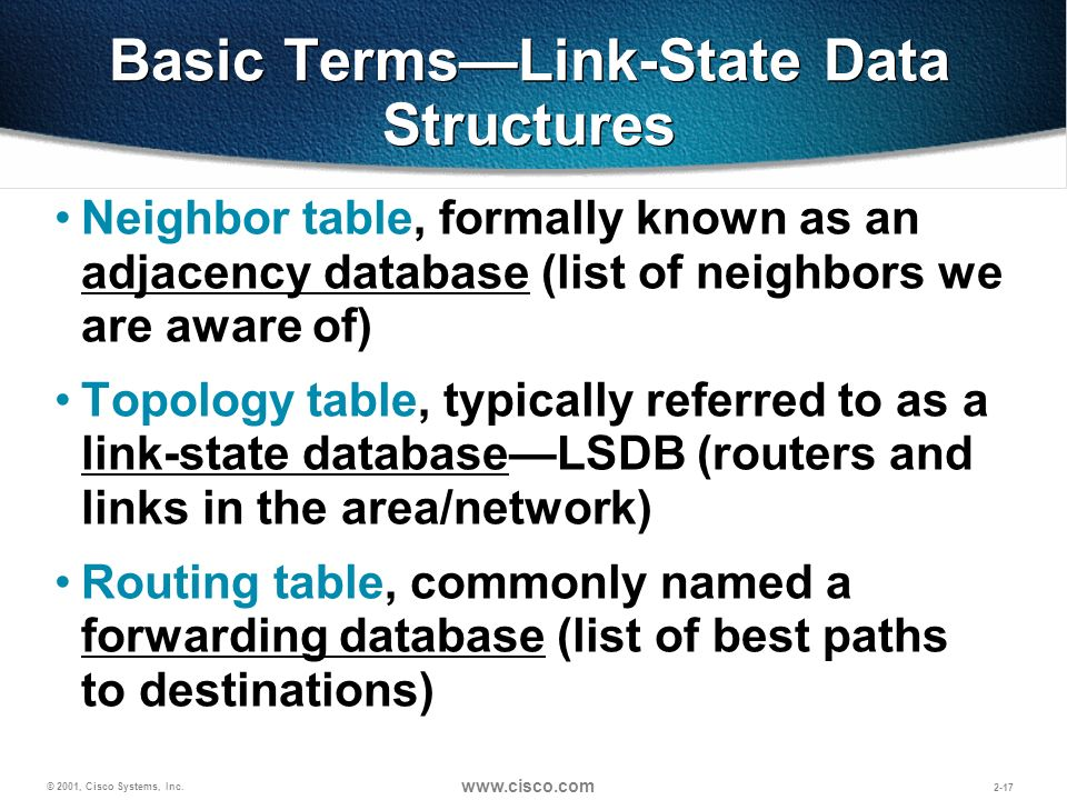 Basic Terms—Link-State Data Structures