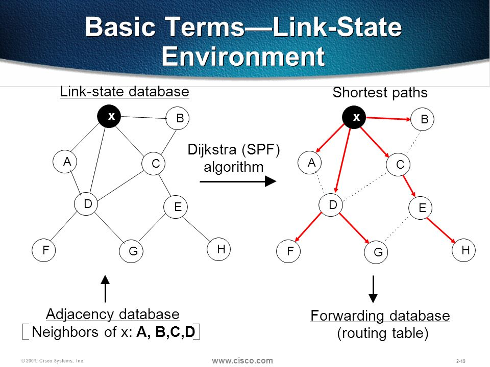 Basic Terms—Link-State Environment