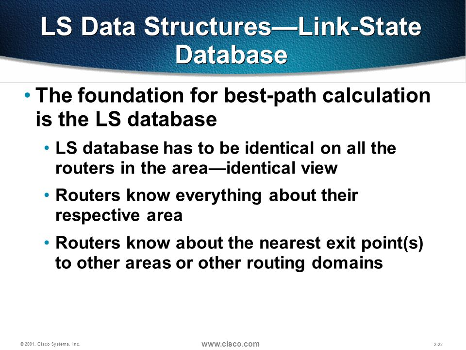 LS Data Structures—Link-State Database